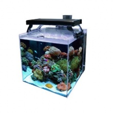 Aqua One NanoReef 35 Aquarium